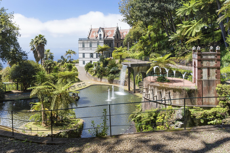 Тропический сад с прудом на Мадейре