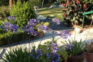 uitzicht-terras-tuin